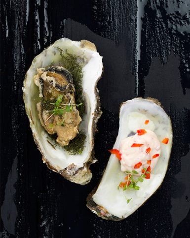 ex09-oesters-2