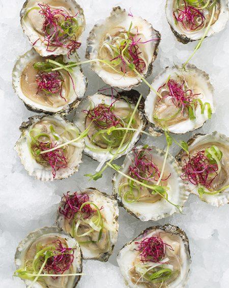 Vietnamese oysters los no text